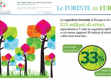 Le foreste in Europa