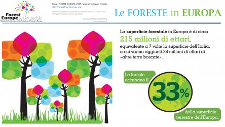 Le infografiche di foresteurope.org – traduzione e trasformazione in video